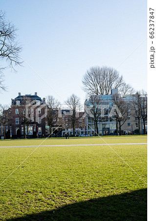 真っ青な快晴の下冬の枝木が並ぶ街並みと芝生の公園 オランダアムステルダムの街並み 66237847