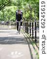 自転車道を走るフードデリバリー 66245619
