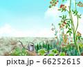 家庭菜園 ナチュラルライフの風景イラスト 66252615