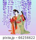 歌舞伎の「藤娘」 66256622