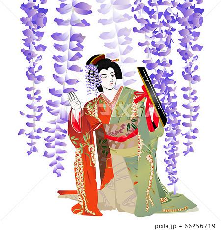 歌舞伎の「藤娘」 66256719