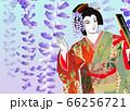歌舞伎の「藤娘」 66256721