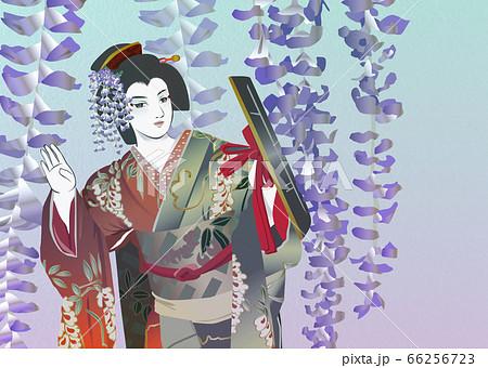 歌舞伎の「藤娘」 66256723