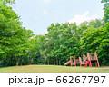 東京都八王子市の自然環境 みなみ野の丘公園 66267797