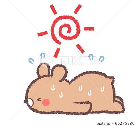 太陽と熱中症クマ 66275530