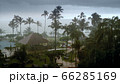 Photo of heavy rain and strong wind during typhoon at hotel resort on tropical island in Indian ocean 66285169
