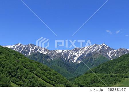 鹿島槍黒沢高原から望む初夏の北アルプス 爺ヶ岳と鹿島槍ヶ岳 66288147