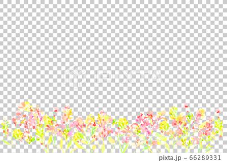 花 草花 背景 ナチュラル イラスト 水彩 66289331