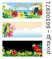南国の鳥と観葉植物の背景セット 66300971