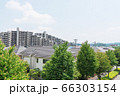 東京都 栃谷戸東緑地 緑の中の住宅街 66303154
