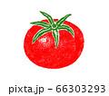 トマトのイラスト 66303293