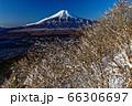 忍野・杓子山の新雪の木々と富士山の眺め 66306697