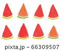 手描きスイカのイラストセット 66309507