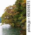 秋色に色付き始めた湖畔の樹木 66309875