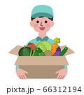 野菜が入った段ボールを持つ配達員 66312194