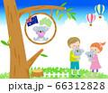 オーストラリアでかわいいコアラを抱っこする笑顔の男の子と女の子 青空 66312828