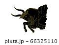 88星座線なし黒おうし座 66325110