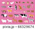 いろんな動物 66329674