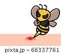 スズメバチに刺される コピースペース 66337761