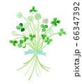 ふわふわクローバーの花束 水彩 66347392