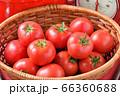 赤いキッチン、お料理、クッキングイメージ、フルーツトマト、鍋、キッチンスケール。 66360688