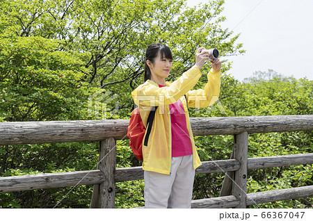 展望台の上でデジカメで写真を撮る女性 66367047