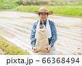 田植えと米収穫イメージ 66368494