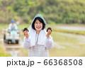 田んぼでおにぎりを持つ女性 66368508