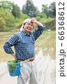 田植えをする男性 66368612