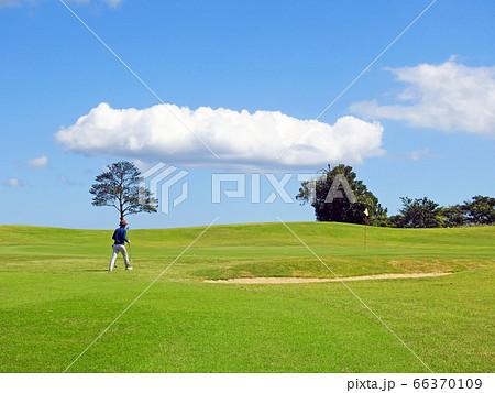 爽やかなゴルフ場 ぽっかり浮かぶ白い雲 66370109