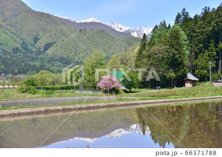 代搔き後の水田に映り込む初夏の風景 66371788