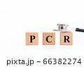 PCR検査 アルファベットの文字 66382274