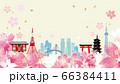 桜と東京のビル群のイラスト 66384411