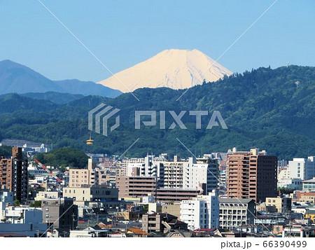 八王子の富士/ひよどり山より遠望 66390499