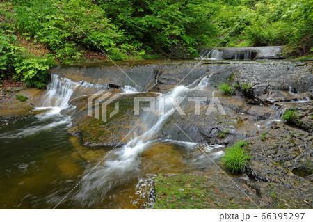 新緑の中を流れ下る清流-恵みの森 福島県只見町 66395297