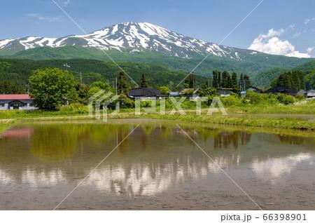 山形県から見た鳥海山と水田に映る逆さ鳥海山と青空 66398901