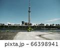 隅田川風景 66398941