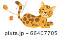 ネコ 猫 ねこ ベンガル ベンガルネコ 動物 イラスト 66407705