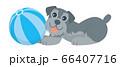 犬 いぬ イヌ dog シュナウザー ミニチュアシュナウザー ペット 動物 イラスト 66407716