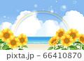 ひまわりと虹の架かった海のイラスト 66410870