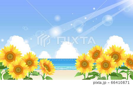 夏の海とひまわりのイラスト 66410871