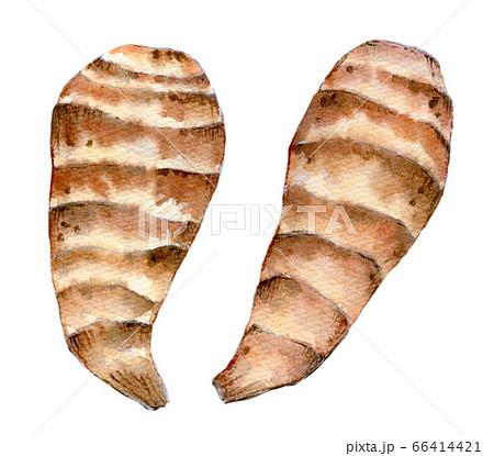 水彩イラスト 食品 食べ物 海老芋 66414421