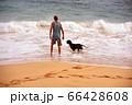 犬と休日 66428608
