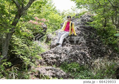 緑に囲まれた森の中の大きな岩で座ってポーズをとる女性 66429933