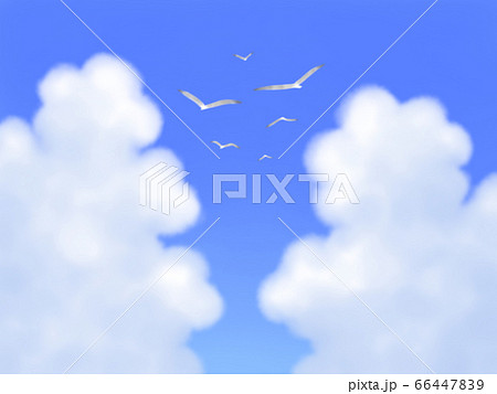 カモメが飛ぶ、モクモク雲のある青空・横長 66447839