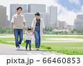 土手を歩く親子(新しい生活様式イメージ) 66460853
