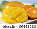 新鮮で美味しいマンゴー 66461288