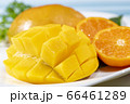 新鮮で美味しいマンゴー 66461289