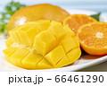新鮮で美味しいマンゴー 66461290