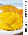 新鮮で美味しいマンゴー 66461291